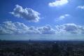 [空]キャロットタワー