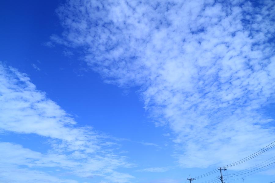 f:id:yuichi_alex:20191020113532j:plain