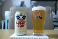 [ビール]黄桜 Lucky Cow
