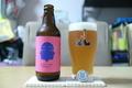 [ビール]松本ブルワリー × サノバスミス Another Pale Ale