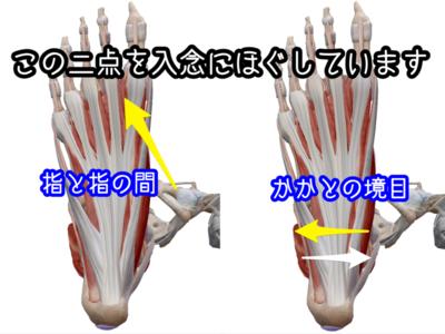 f:id:yuichisatoblog:20200513181742p:plain
