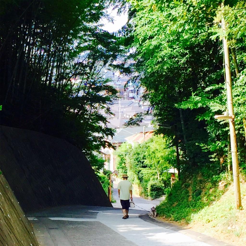 f:id:yuicoogawa:20160817104955j:image