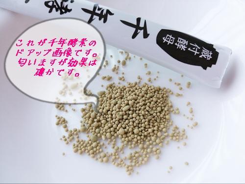 f:id:yuik575:20131004155901j:image
