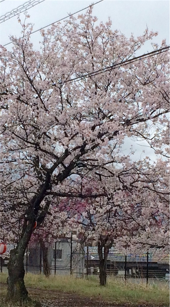 f:id:yuika193:20170409131417j:image