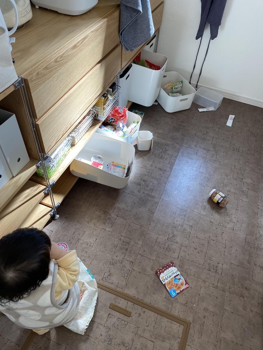 f:id:yuika_bob:20210215211448j:plain