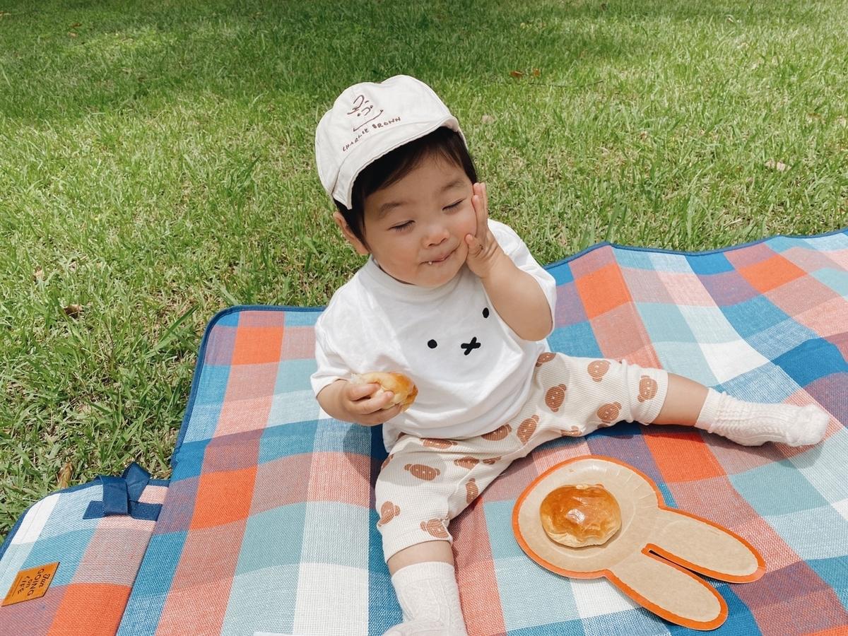f:id:yuika_bob:20210625224554j:plain