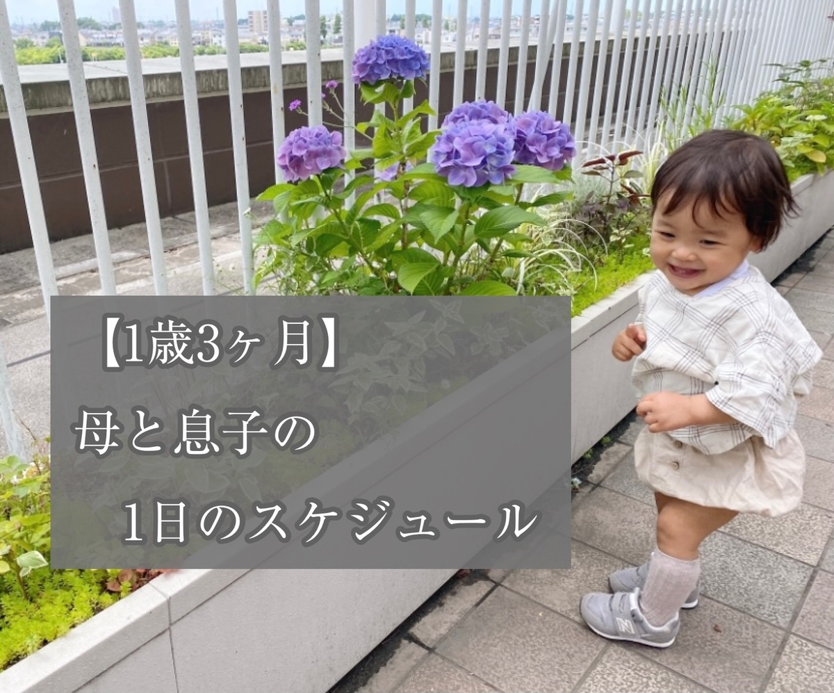 f:id:yuika_bob:20210625225932j:plain