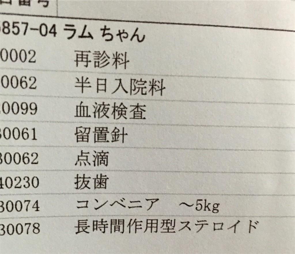 f:id:yuikawanishi:20200730053918j:image