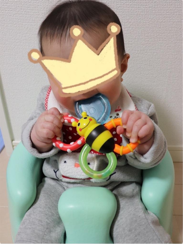 f:id:yuimaru0621:20190117202812j:image