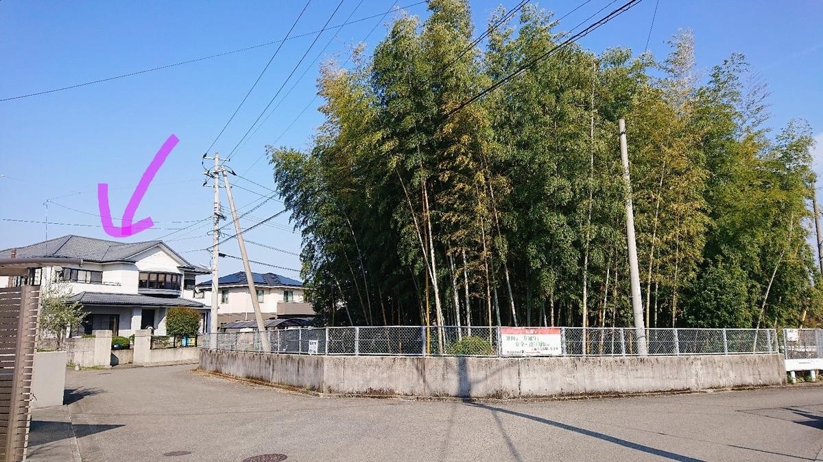 f:id:yuinchi:20200404161444j:plain