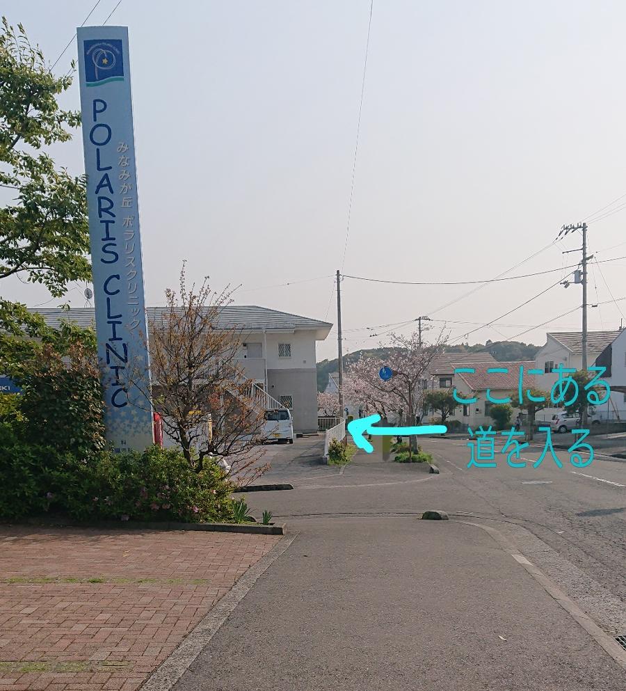 f:id:yuinchi:20200409090020j:plain