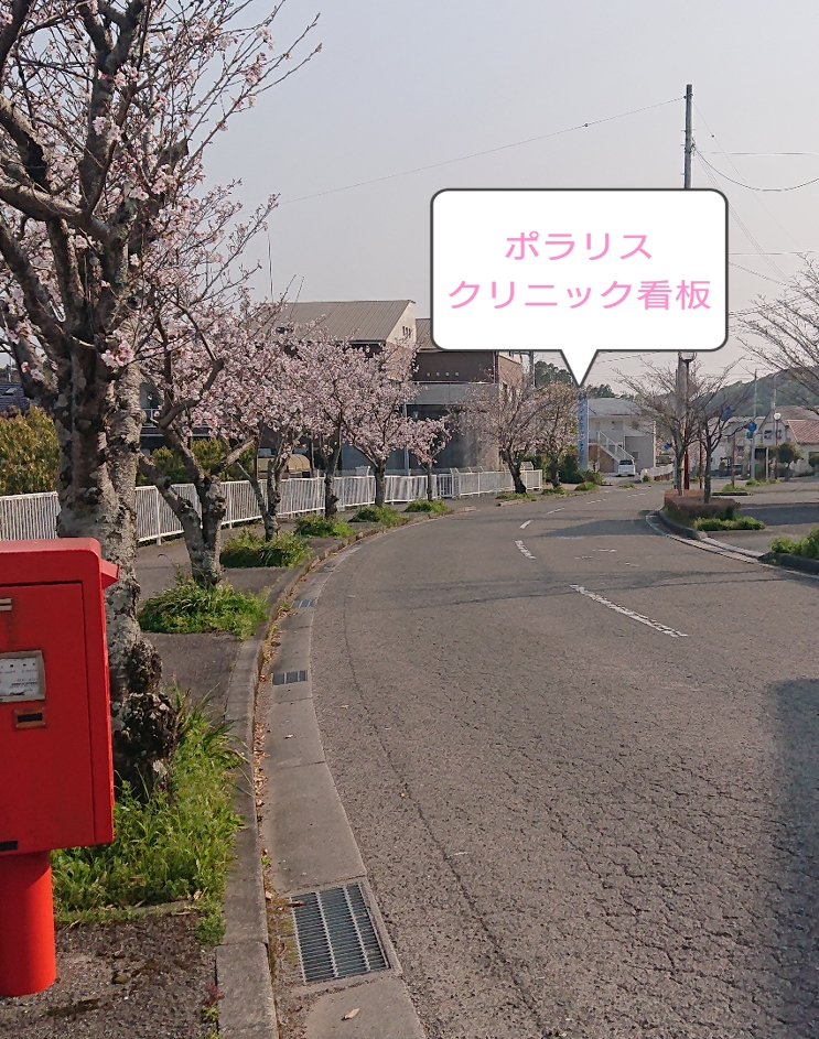 f:id:yuinchi:20200409090510j:plain