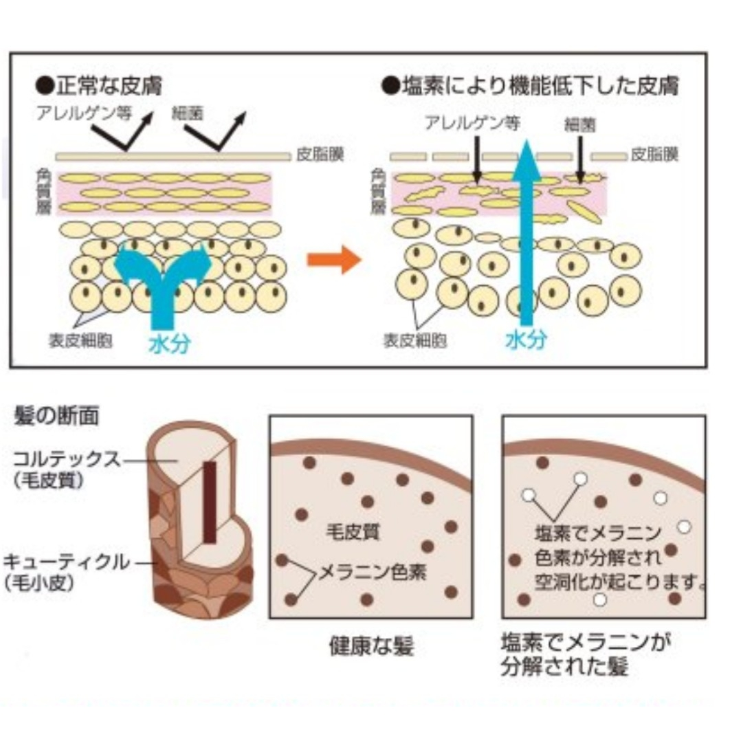 f:id:yuinchi:20201016233250j:plain