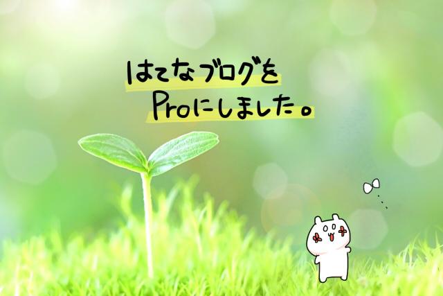 f:id:yuipe:20171201210112j:plain