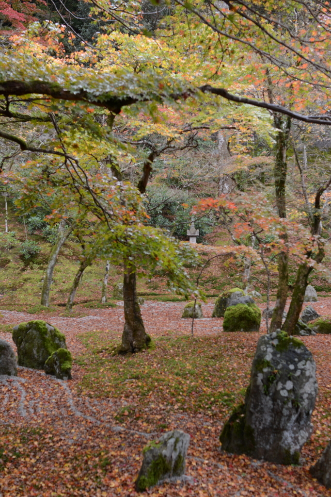 f:id:yuito33:20151126130337j:plain