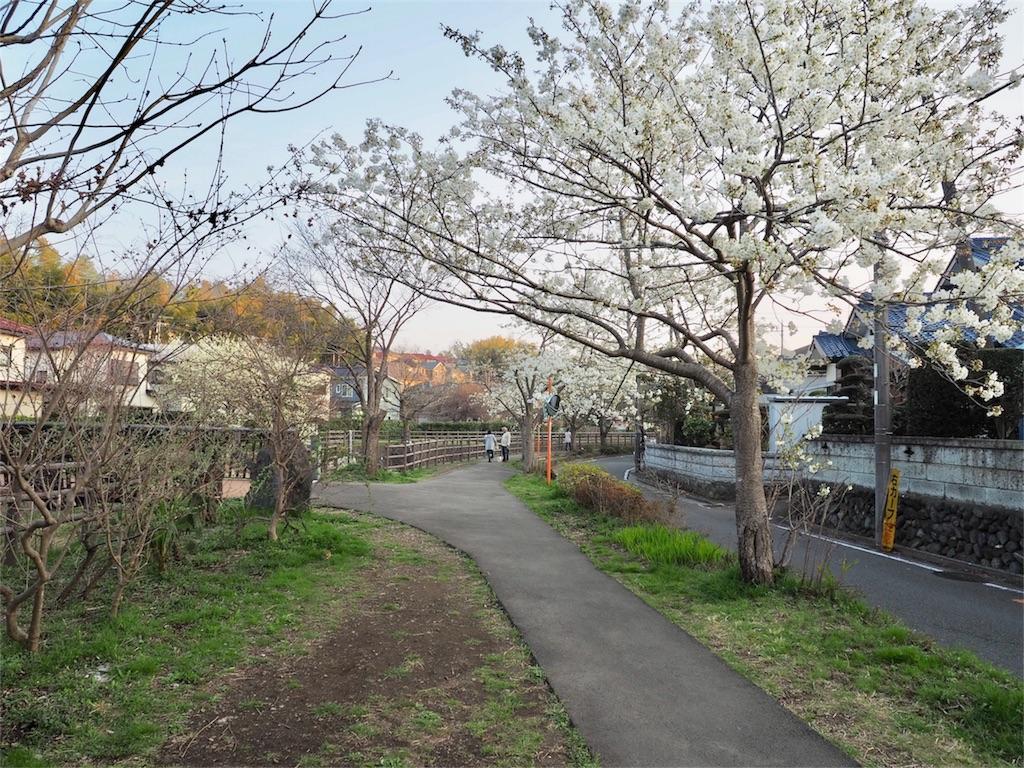 f:id:yuji0602:20180326214933j:image