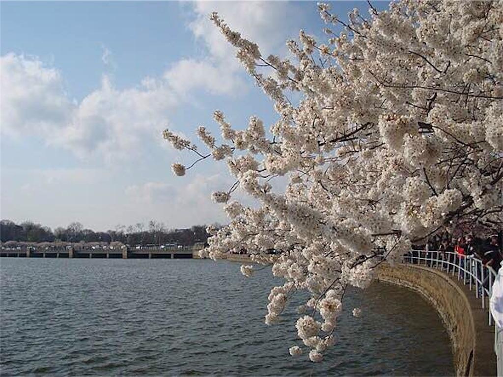 f:id:yuji6733:20190618191201j:image