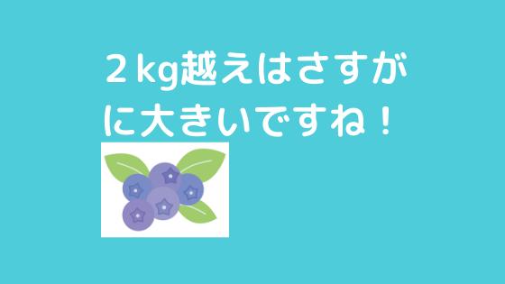 f:id:yujin-life:20200529230508p:plain