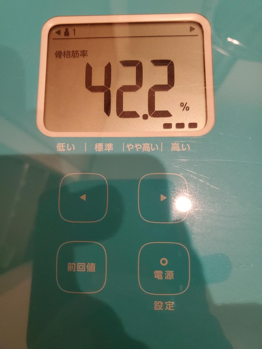f:id:yujin-life:20200809231938j:plain