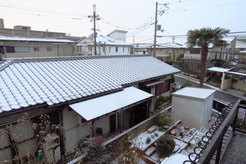 f:id:yujiro-1:20170116060136j:image:w640