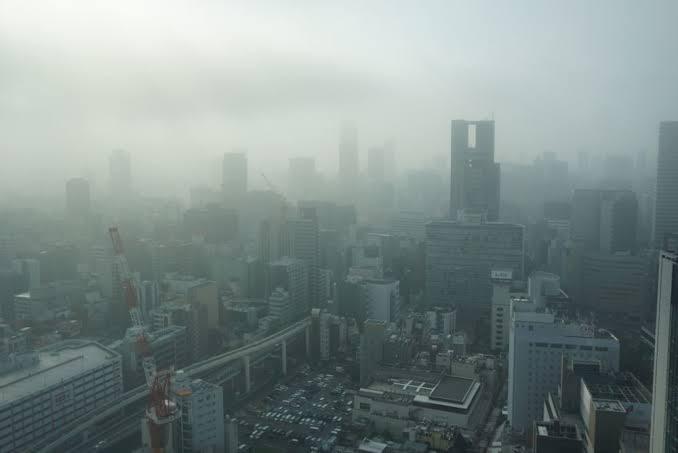 f:id:yujiro-1:20200125055631j:plain