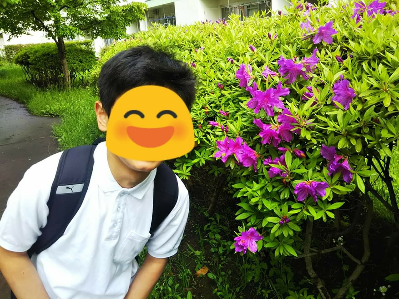 f:id:yujisyuji:20190505231907j:image