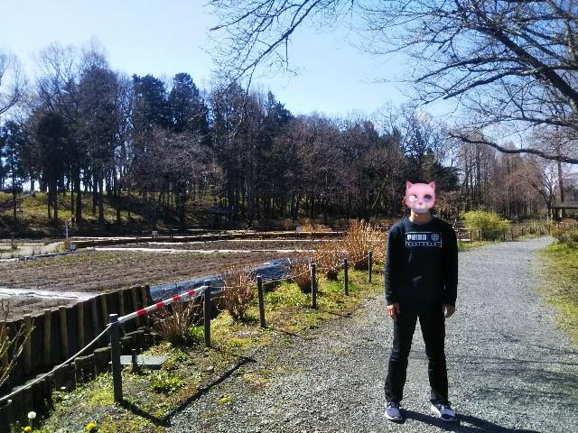 f:id:yujisyuji:20210314151228j:image