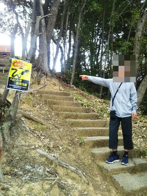 f:id:yujisyuji:20210407014850j:image