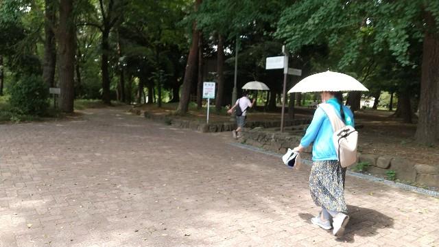 f:id:yujisyuji:20210811173420j:image