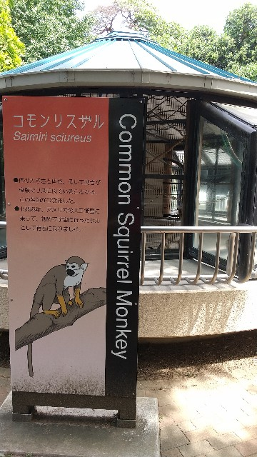f:id:yujisyuji:20210811213001j:image
