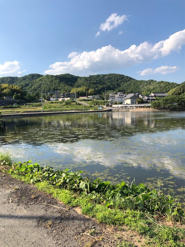 f:id:yujitaguchi:20200529080509j:image