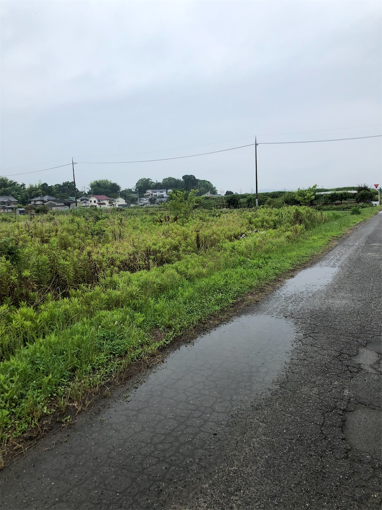 f:id:yujitaguchi:20200626092132j:image