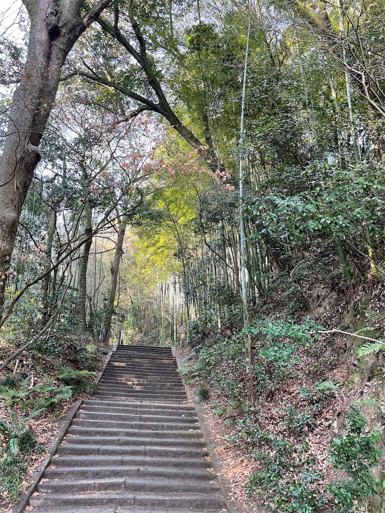 f:id:yujitaguchi:20210116150114j:image