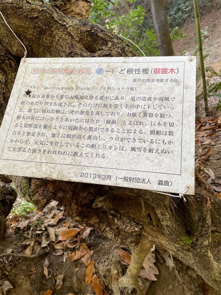 f:id:yujitaguchi:20210116150118j:image