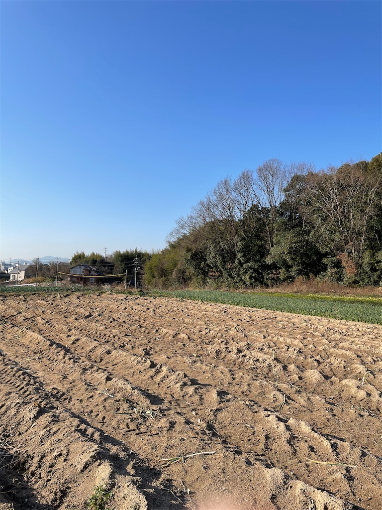 f:id:yujitaguchi:20210130161802j:image