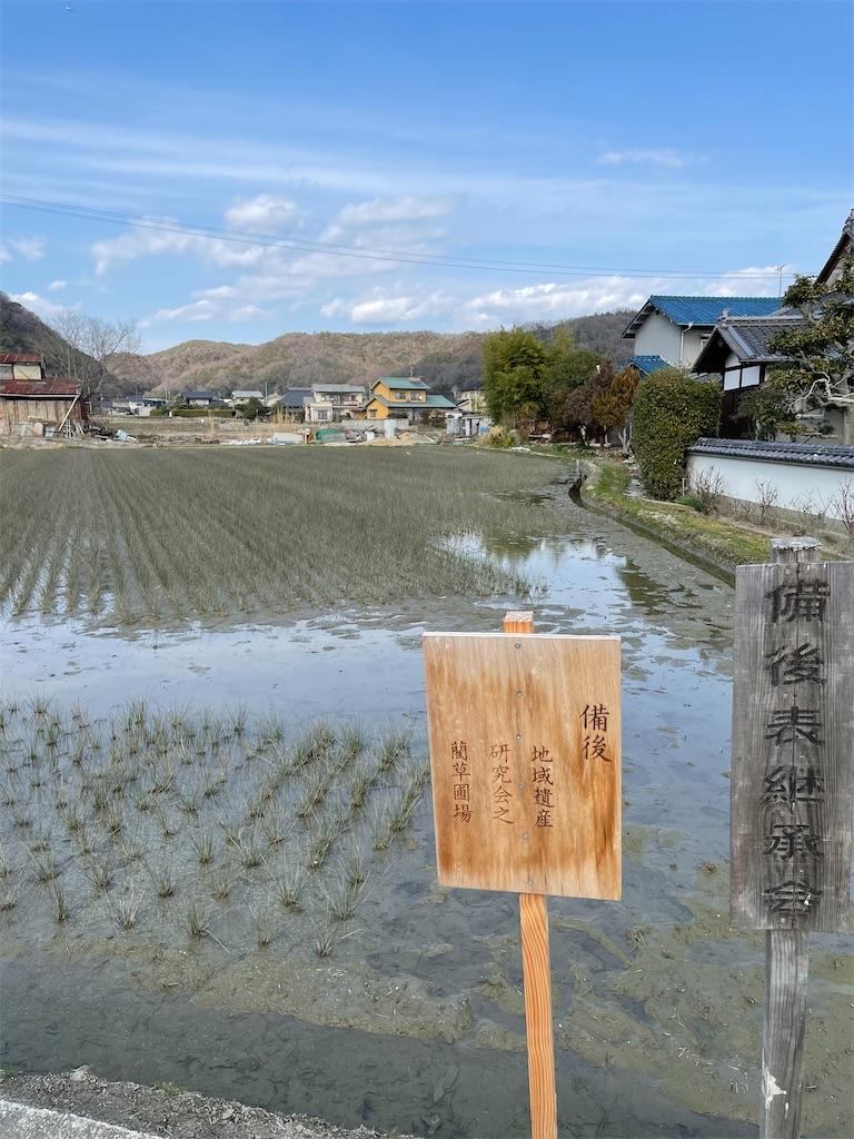 f:id:yujitaguchi:20210224143401j:image