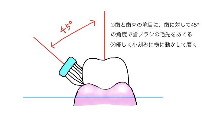 f:id:yuka-tama:20200409204540j:plain
