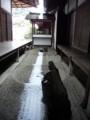 大徳寺 東滴壺
