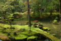 西芳寺(苔寺)