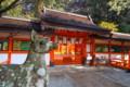 大原野神社 狛鹿