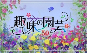 f:id:yuka878:20160925005550j:plain