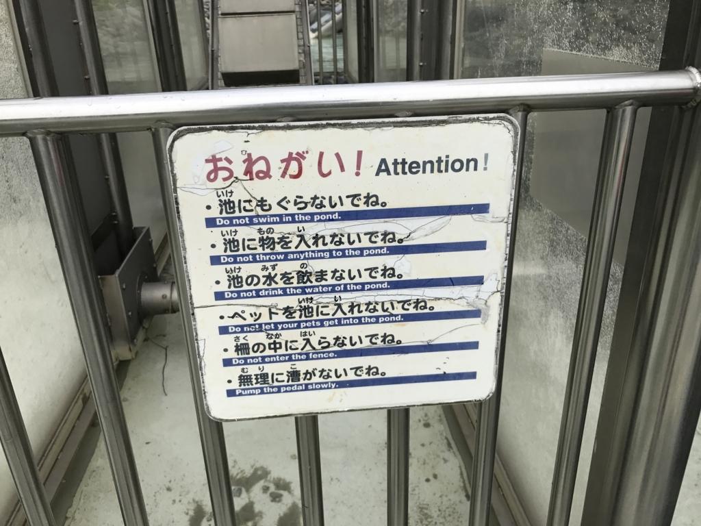 f:id:yuka878:20170817203448j:plain