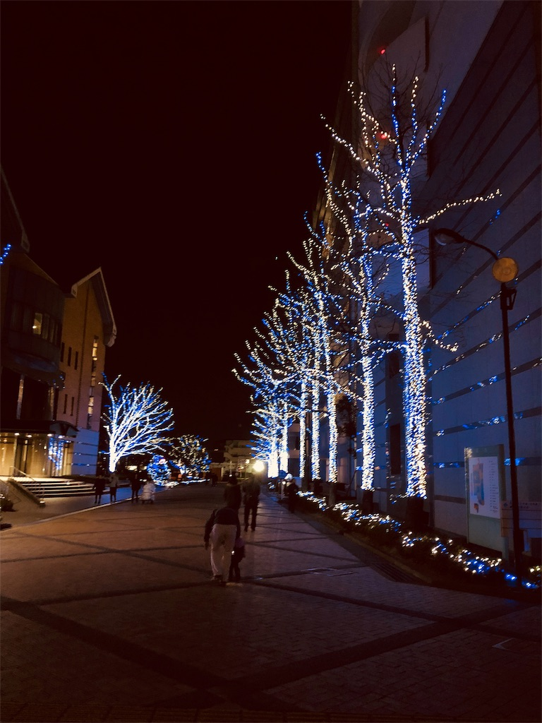 f:id:yuka8787:20171223103513j:image