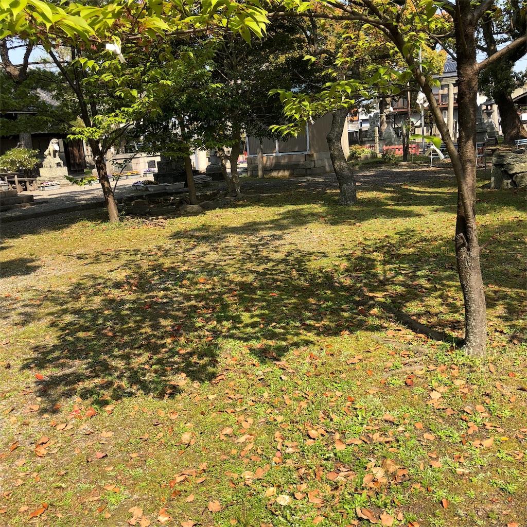 f:id:yuka8787:20180405230840j:image