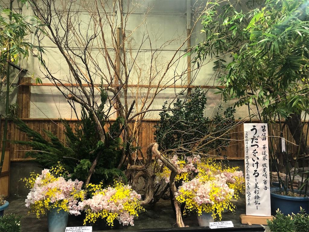 f:id:yuka8787:20190210002441j:image