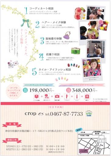 f:id:yuka_biyoushi:20200525201509j:image