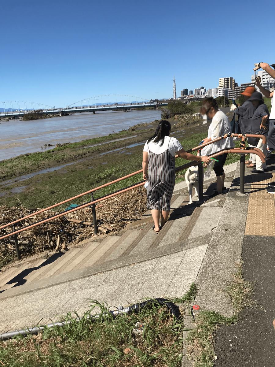 台風翌日の多摩川河川敷の写真2
