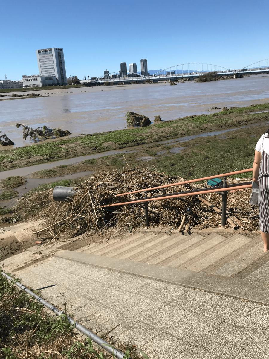台風翌日の多摩川河川敷の写真1
