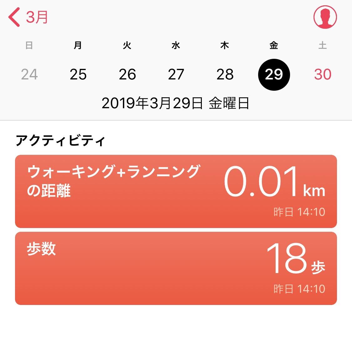 f:id:yukaichi:20190331012922j:plain