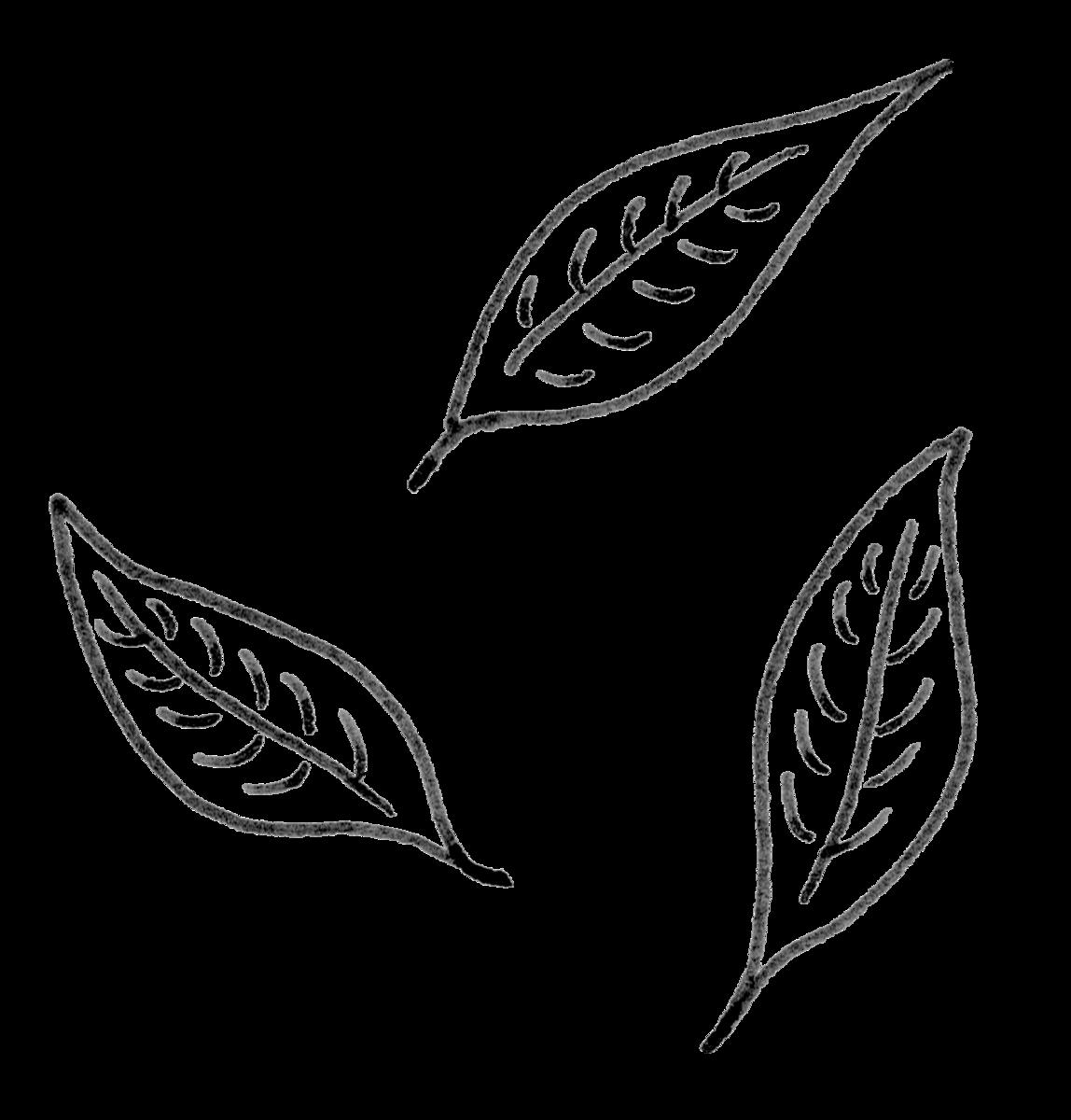f:id:yukaleaf-aroma:20190823184923p:plain
